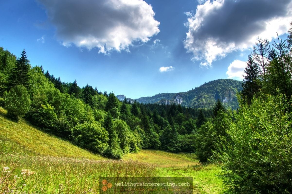 Landscape at Jánošíkove Diery, Slovakia