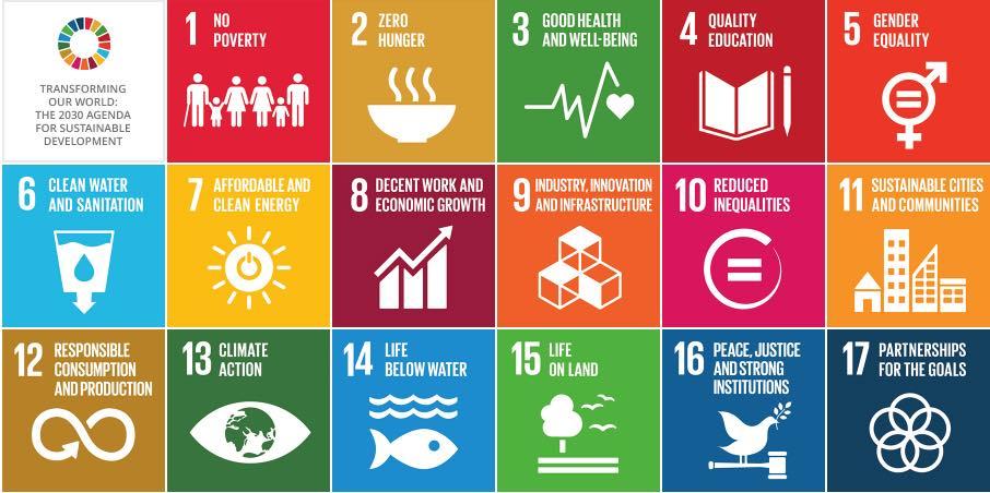 What are the UN SDGs,un sustainable development goals